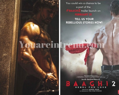 Baaghi 2 Cast, Crew, Storyline, Release Date